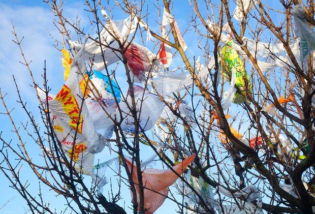 Использование пластиковых пакетов в Великобритании упало на 85% - 3