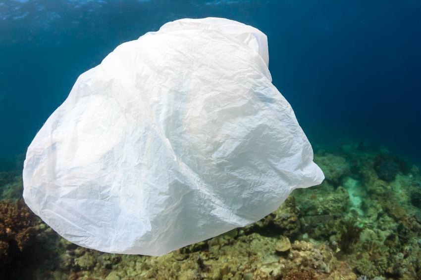 Использование пластиковых пакетов в Великобритании упало на 85% - 1