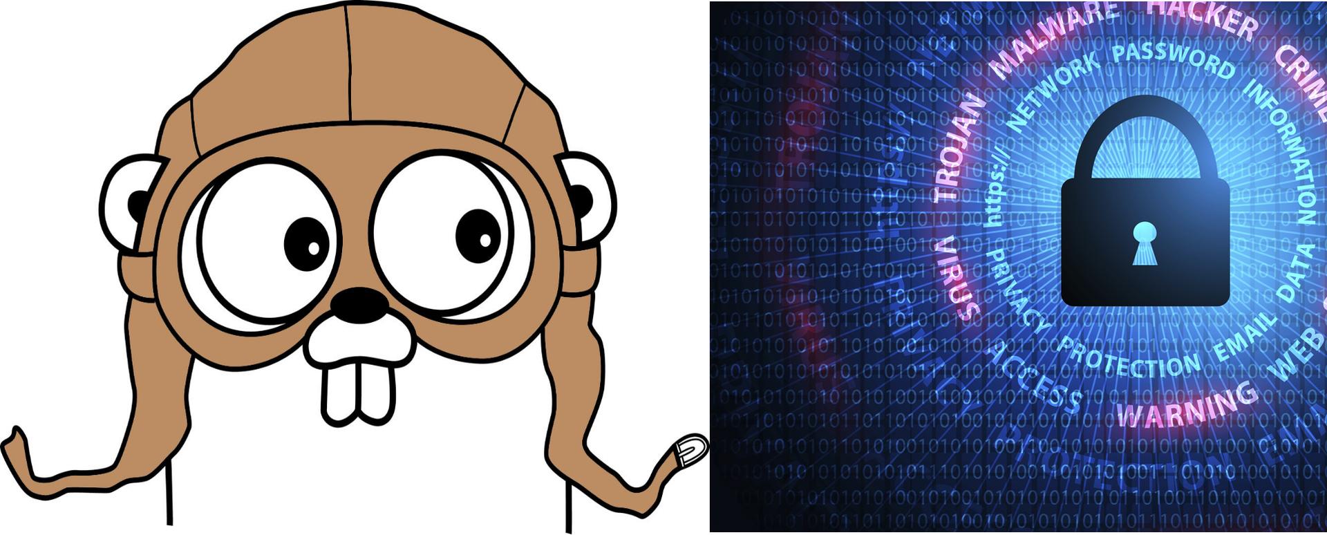 Безопасное использование языка Go в веб-программировании - 1