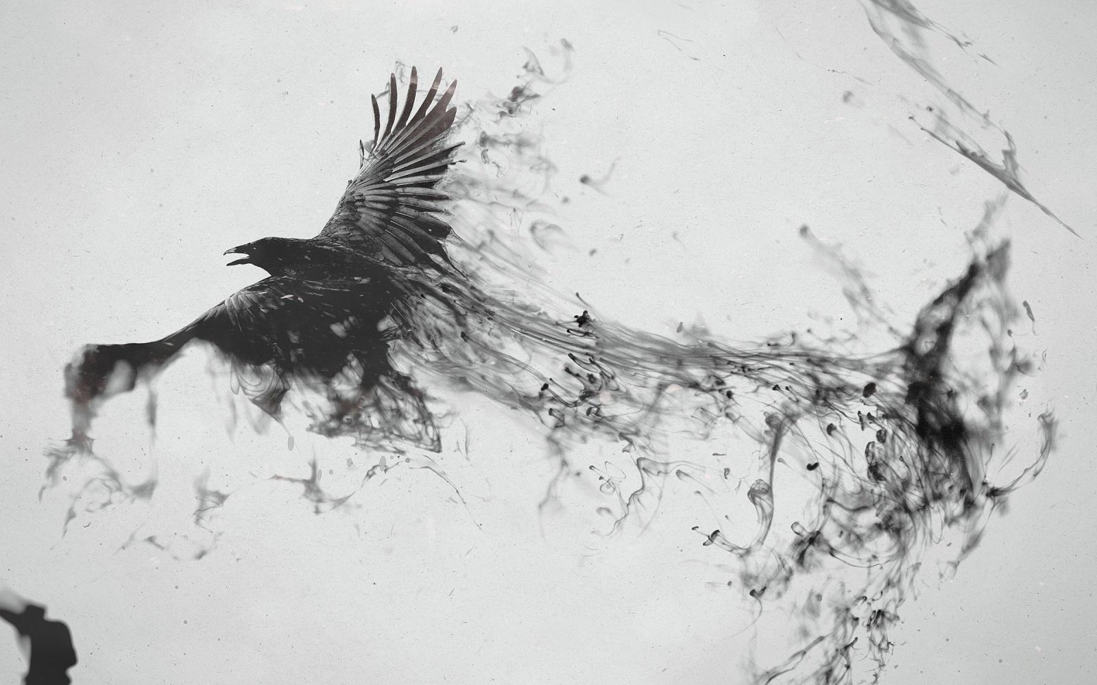 E Ink-2016: как сегодня обстоят дела на рынке ридеров-покетбуков? - 1