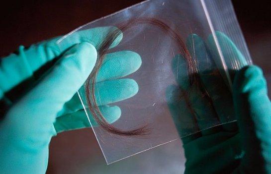 Американские биологи заменят анализ ДНК исследованием белков волос