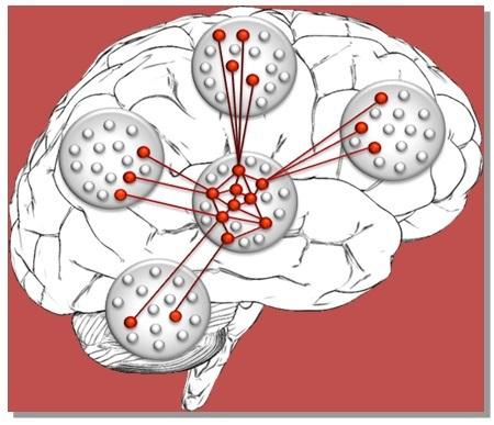 Память, консолидация памяти и бабушкины нейроны - 10