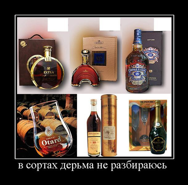 Теории заговора. Алкогольное лобби - 9