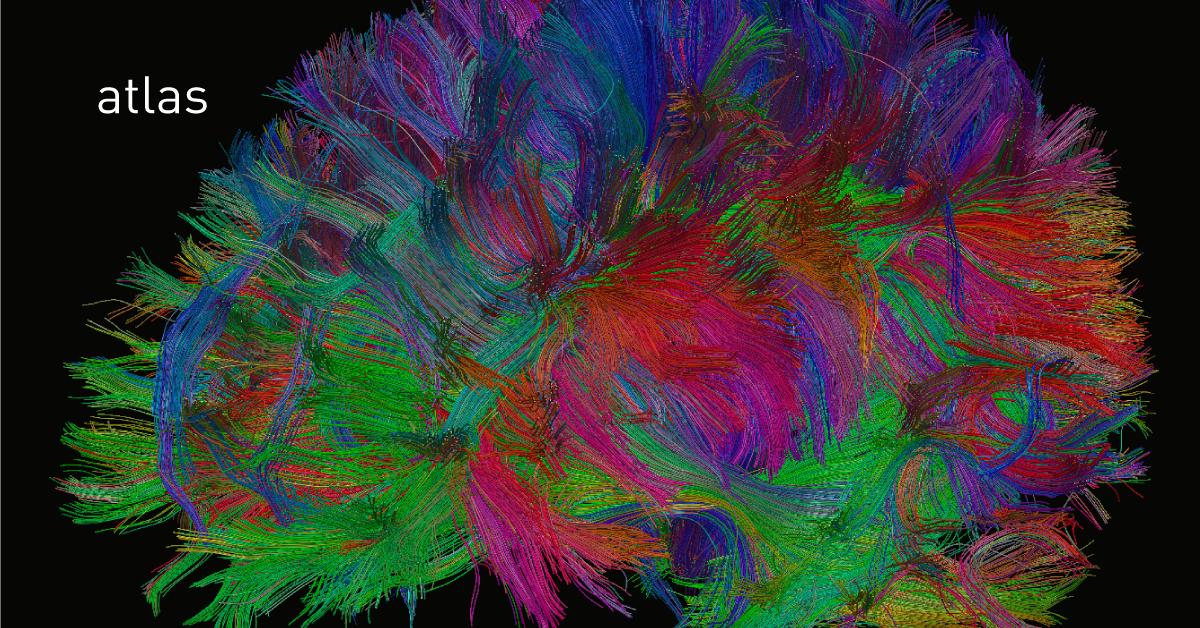 Нейромедиаторы, часть третья: опиоидные пептиды - 2