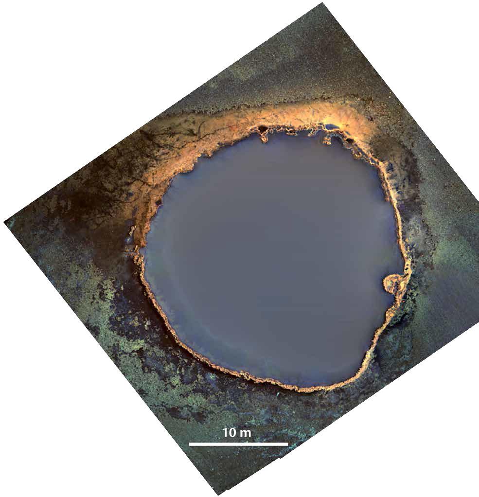 На дне Мексиканского залива нашли ядовитое озеро - 2