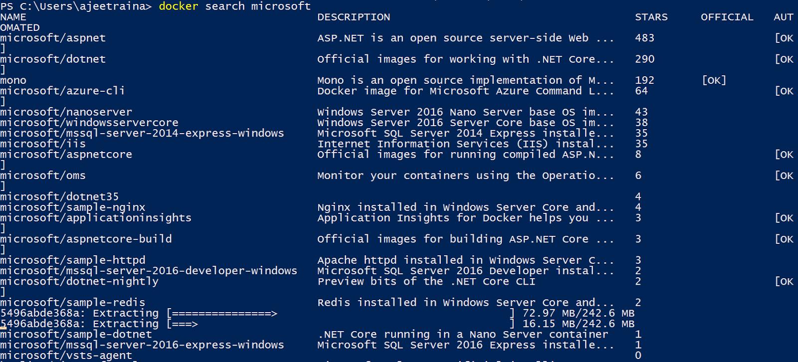 Сравнительный анализ Docker Engine на платформах Windows Server и Linux - 7