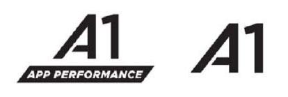 Первым определен класс App Performance Class 1 или A1