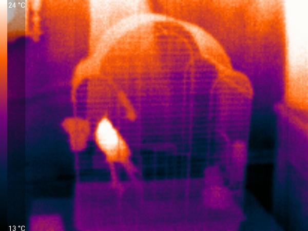 Увидеть невидимое, подключить не подключаемое или выжимаем все соки из Seek Thermal - 25