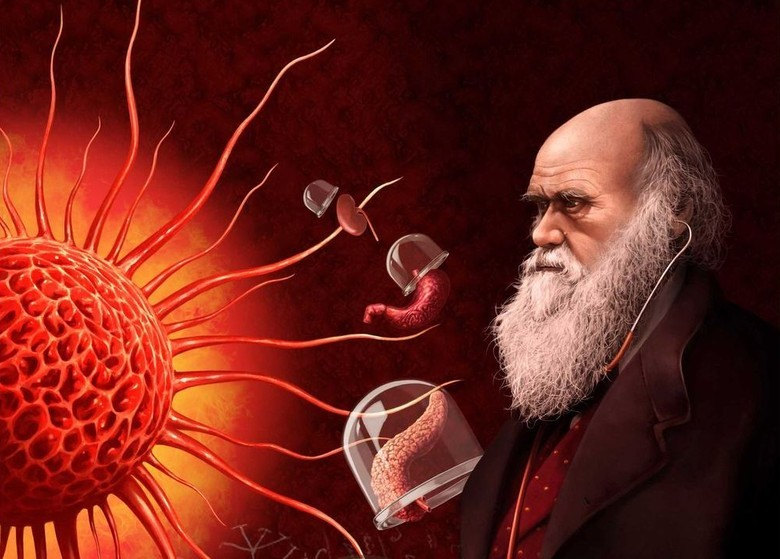 ИИ и диагностика: наследие Парацельса - 2