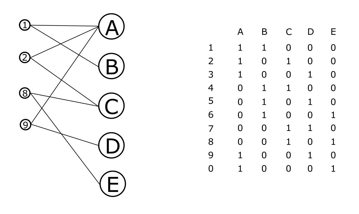 Логика сознания. Часть 9. Искусственные нейронные сети и миниколонки реальной коры - 16