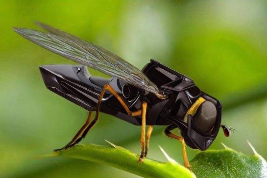 Поляки будут опылять растения с помощью дронов