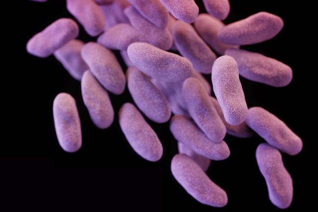 Женщину в США убила бактерия, устойчивая ко всем антибиотикам - 1