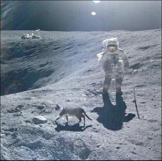 Размышления о борьбе с космическими конспирологами - 1