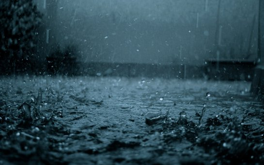 Ученые узнали, что для формирования дождя нужны бактерии
