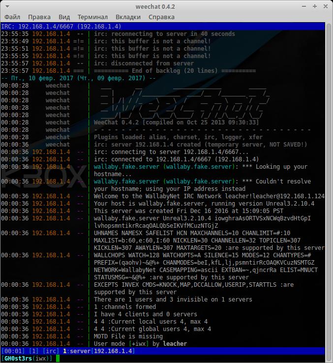 VulnHub: Выкидываем неугодных из IRC в Wallaby's Nightmare - 10