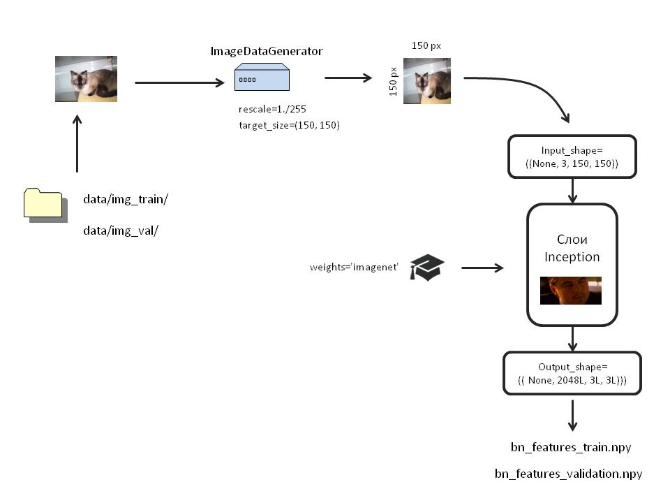 Создаём нейронную сеть InceptionV3 для распознавания изображений - 2