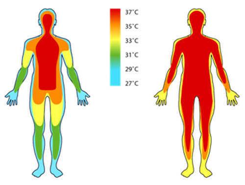 Пару слов в защиту инфракрасных градусников - 6