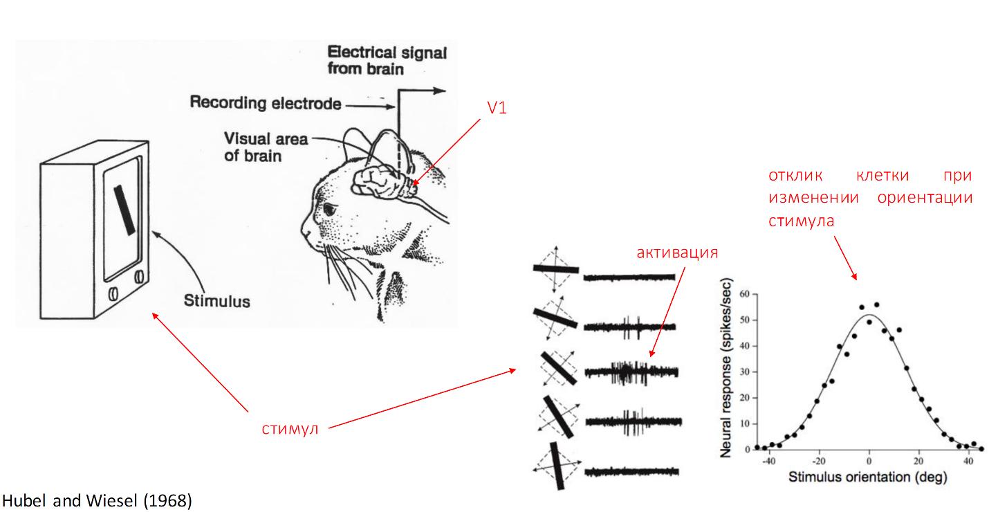 Нейронные сети: практическое применение - 2