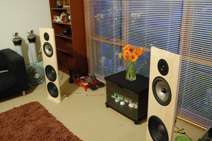 «Анатомия» домашних акустических систем: материалы и акустическое оформление - 23