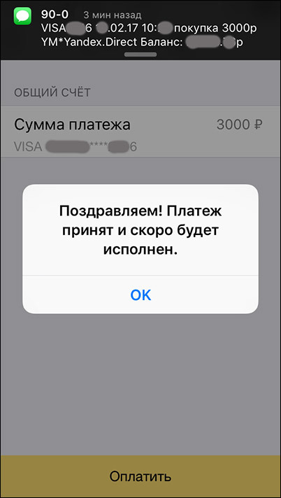 Яндекс игнорирует проверку 3D Secure при оплате рекламы в Яндекс.Директ с помощью банковских карт - 9