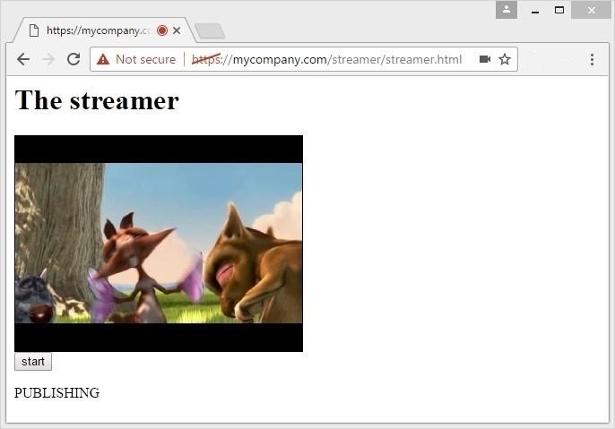 Развертывание многопользовательской WebRTC трансляции с web-камеры через сервер за 3 минуты - 3