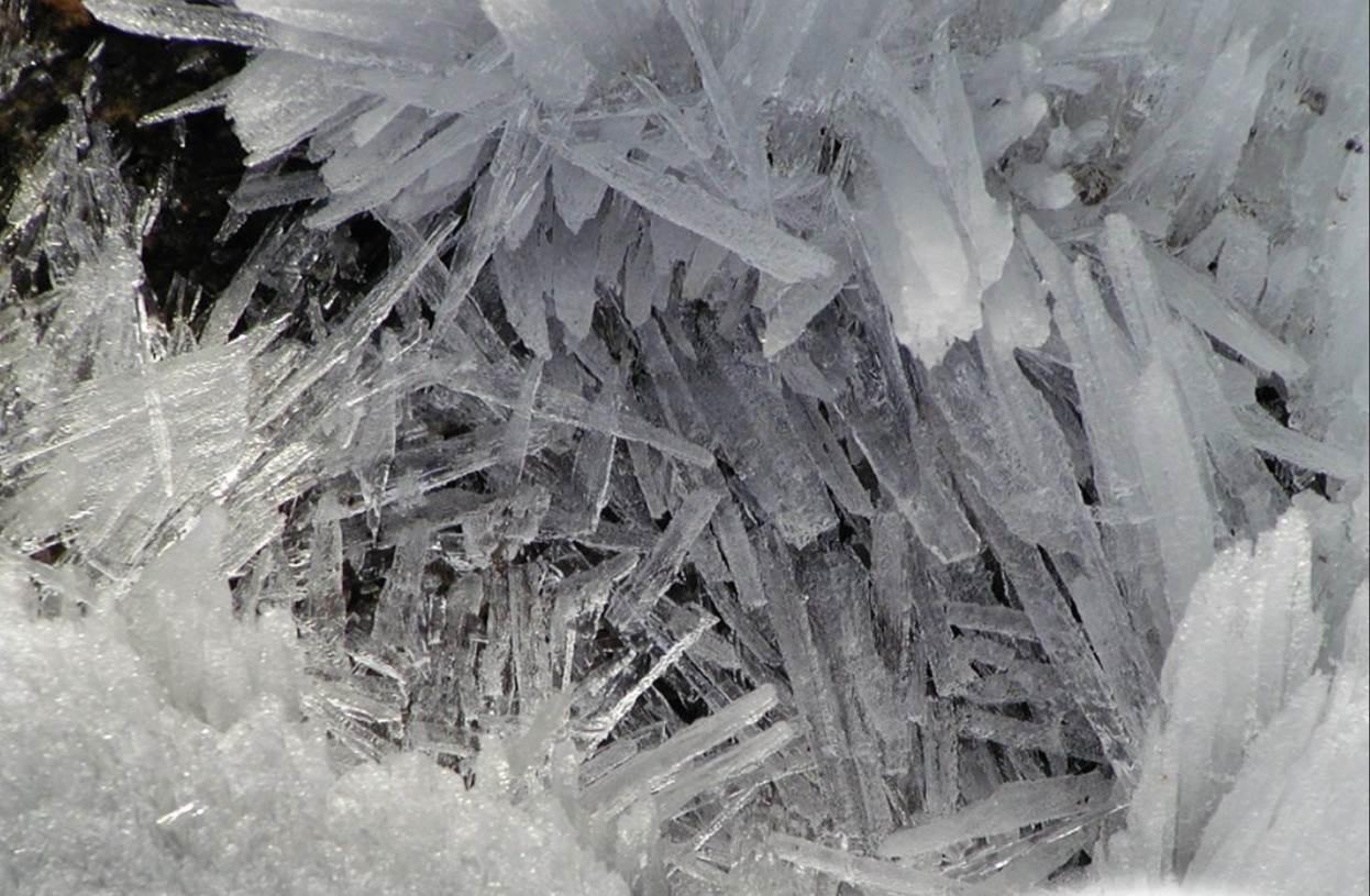 Исследователи разработали технологию быстрой разморозки криоконсервированной ткани - 1