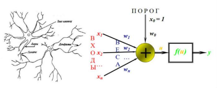 Как мы анализируем уязвимости с помощью нейронных сетей и нечеткой логики - 3