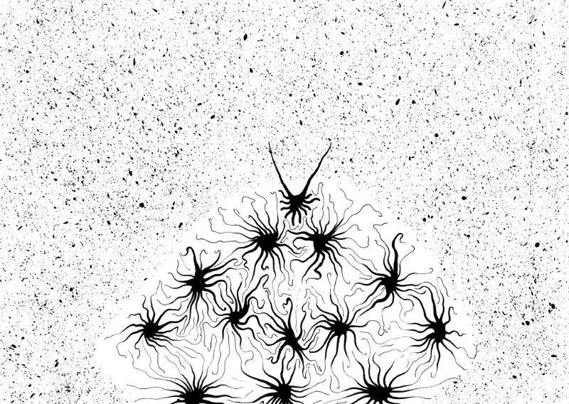 Как мы анализируем уязвимости с помощью нейронных сетей и нечеткой логики - 1