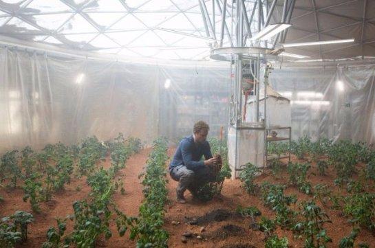 Ученые искусственно создали марсианскую атмосферу и вырастили в ее условиях картофель