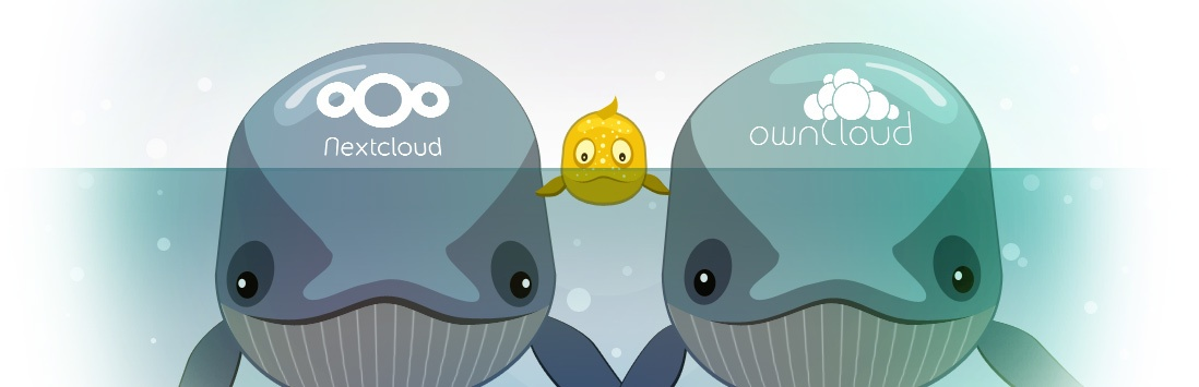 Как мы интегрировались с ownCloud и Nextcloud: подводные камни и их преодоление - 1