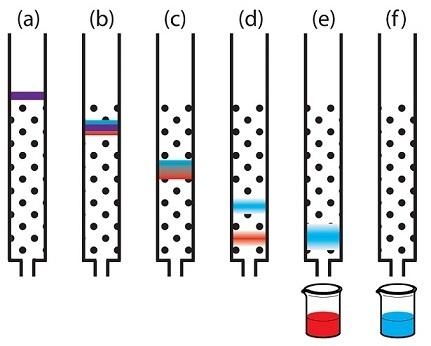 Генная инженерия бактерий: как достать из бактерий нужный нам белок - 5