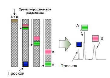 Генная инженерия бактерий: как достать из бактерий нужный нам белок - 6