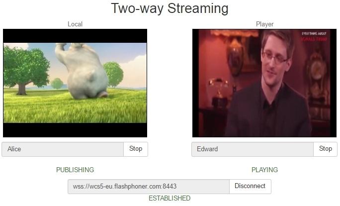 Разрабатываем видеочат между браузером и мобильным приложением - 9