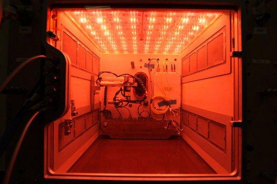 NASA делает ставку на постоянные космические фермы