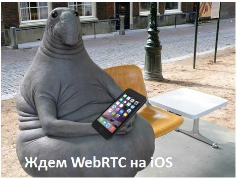 WebRTC, Safari - 2