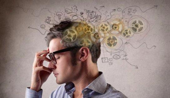Сенсационное открытие о формировании памяти выдвинули ученые