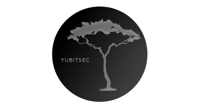 YUBITSEC CTF: Изучайте реверс или +925 очков рейтинга за несколько минут - 1
