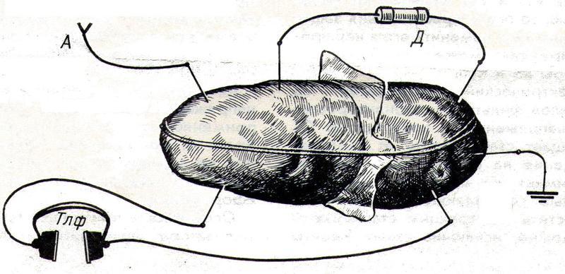 Радиоприемник из … картошки - 3