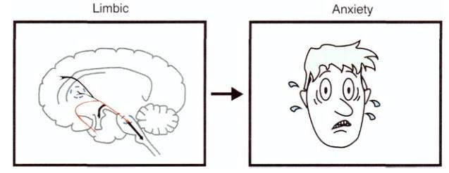 Как лечат сумасшедших. 1.2 — Фармакотерапия: депрессия и антидепрессанты - 12