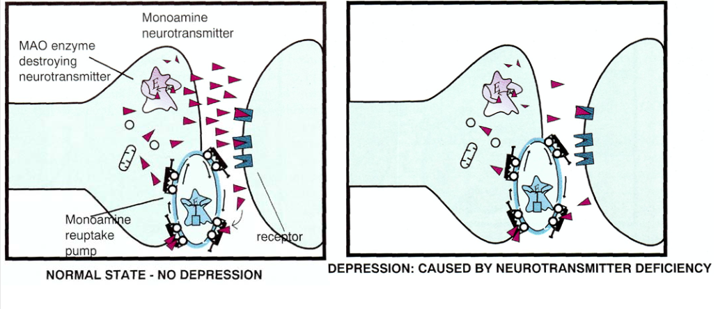 Как лечат сумасшедших. 1.2 — Фармакотерапия: депрессия и антидепрессанты - 3
