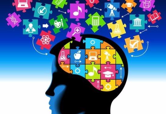 Ученые рассказали, от чего зависит уровень интеллекта