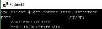 Начинаем работать с IPv6 в операционной системе FortiOS - 3