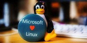 Виртуальные твари и места их обитания: прошлое и настоящее TTY в Linux - 1