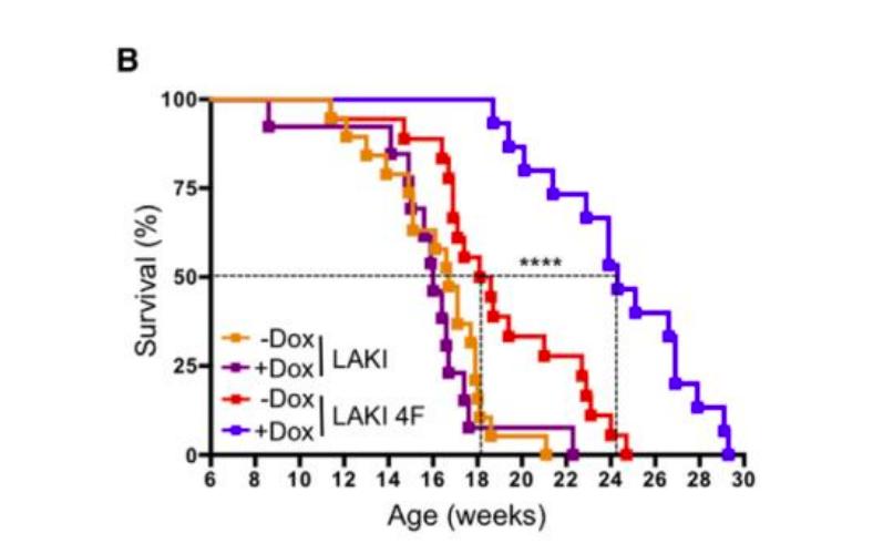 Эпигенетические часы и другие биомаркеры старения - 8