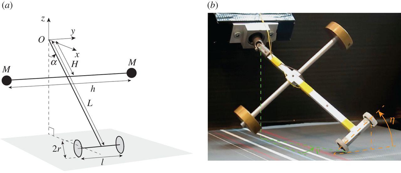 Физики объяснили, как успокоить чемодан на двух колёсиках, который раскачивается из стороны в сторону - 2