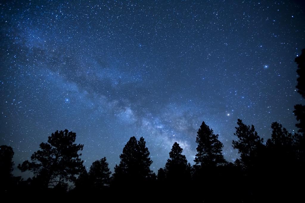 Спросите Итана: сколько из видимых на небе звёзд на самом деле существует? - 2