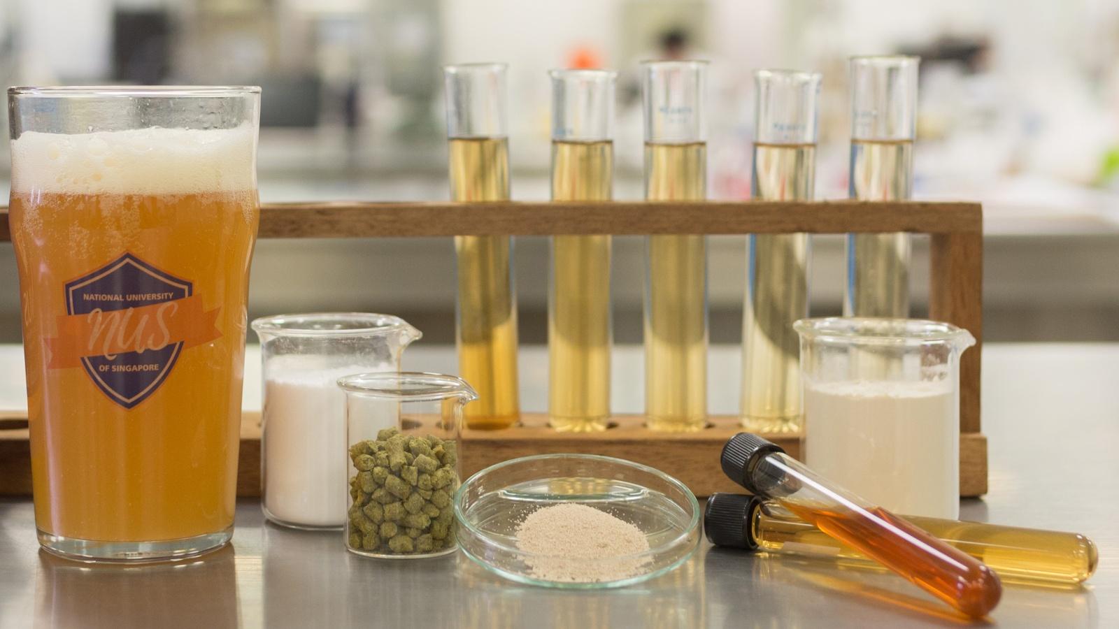 Учёные создали пиво с полезными кишечными бактериями - 1