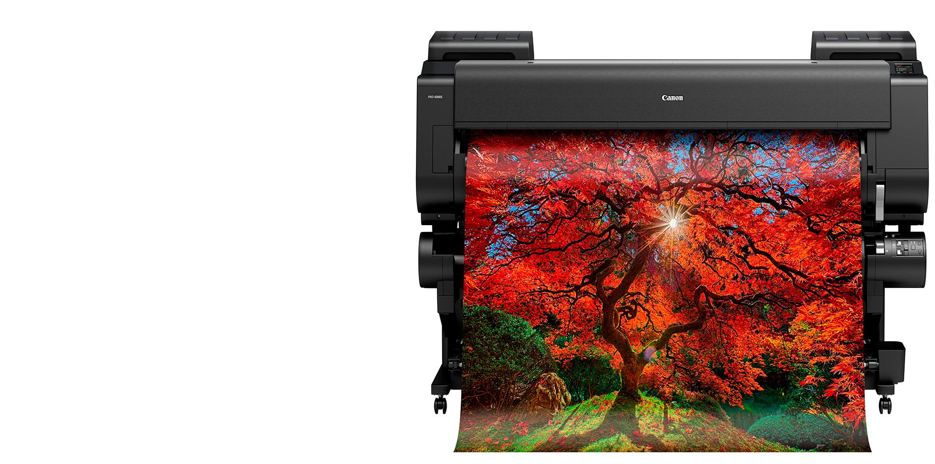 Принтеры с широкой душой. Краткий гид по устройствам для широкоформатной печати Canon - 2