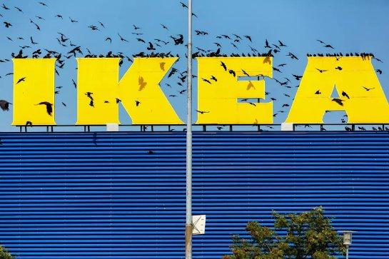 Ikea будет продавать солнечные батареи